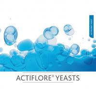 actiflore-yeasts.jpg