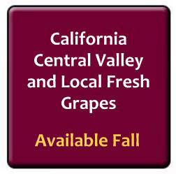 fresh CA and Local Grapes now available